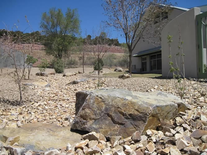 East-Mountain-Library-Xeriscape-01