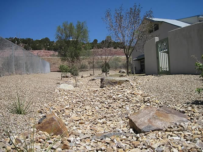 East-Mountain-Library -Xeriscape-02