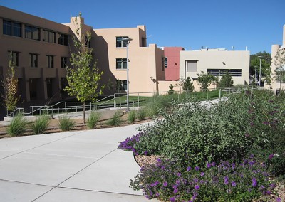 Engineering Commons, University of New Mexico