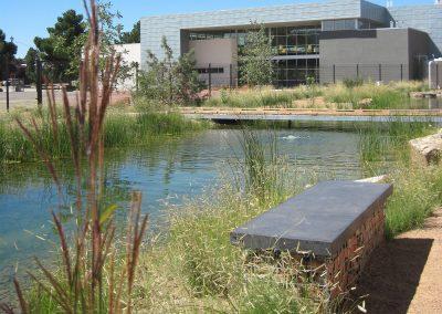 Sandia High School – Constructed Wetland